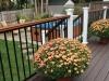 railing-4-new