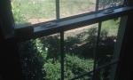 Replacement Windows Nashville