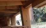 Durante deck-wood structure.JPG